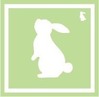 ボディペイント用抜き型シール(ステンシル)/「うさぎ」10枚入