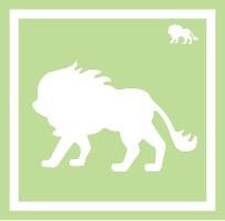 ボディペイント用抜き型シール(ステンシル)/「ライオン」10枚入