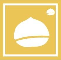 ボディペイント用抜き型シール(ステンシル)/「くり」10枚入