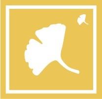 ボディペイント用抜き型シール(ステンシル)/「いちょう」10枚入